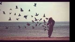 Расскажите птицы - Дима Билан