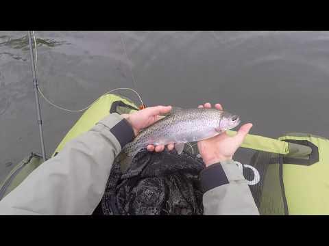 Fishing Shannon Lake BC