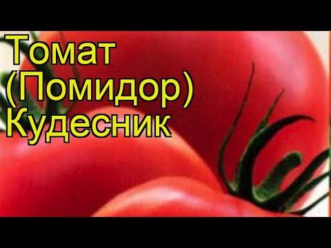 Томат обыкновенный Кудесник. Краткий обзор, описание характеристик, где купить семена