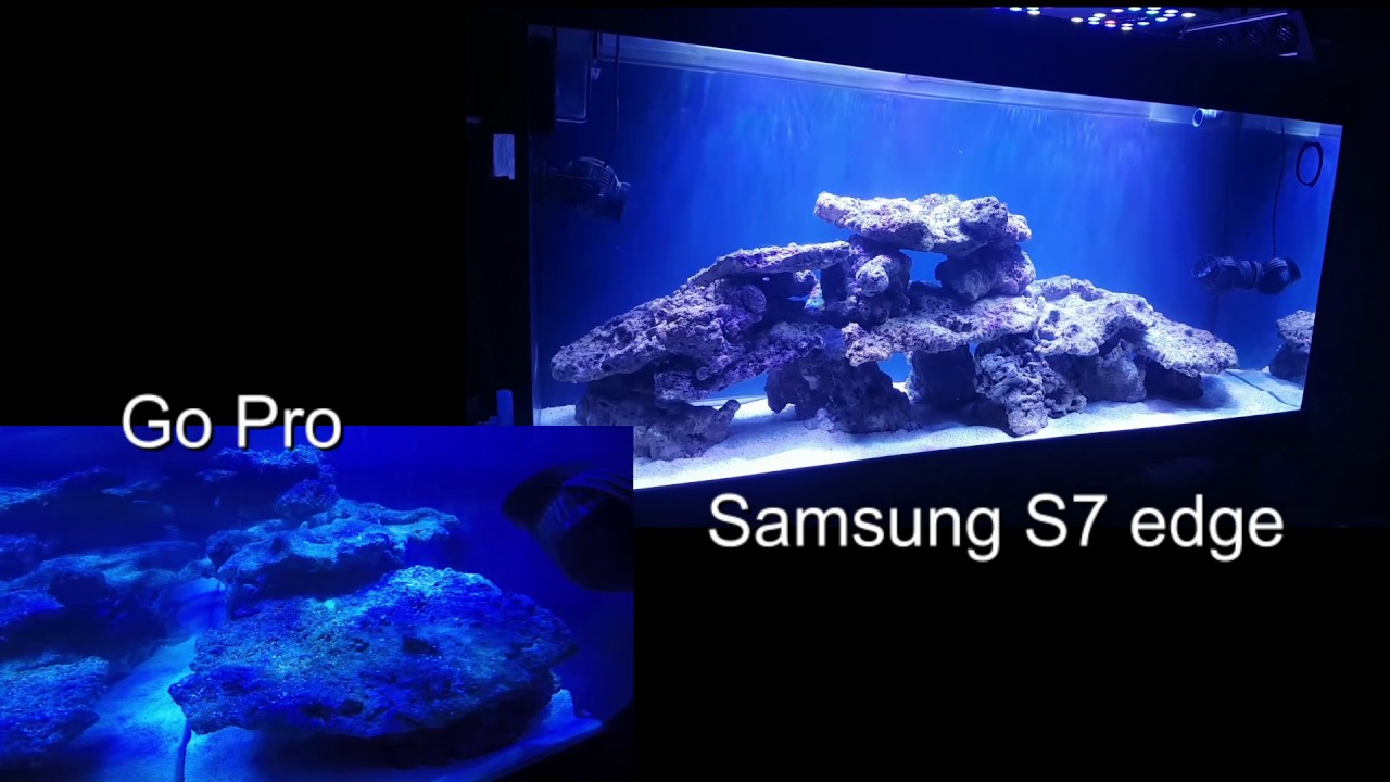 Rampe Eclairage Led Aquarium Recifal Moonbootsonline