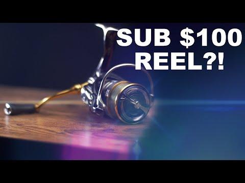 BEST Spinning Reel UNDER $100 (2019)