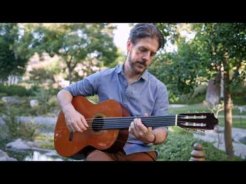 Fretless Guitar | Buzz Gravelle