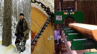 Tree to Timber ~ Log to Lumber, on my Portable Sawmill- Log Cabin Update- Ep 10.6
