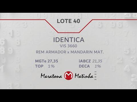 LOTE 40 Maratona Matinha