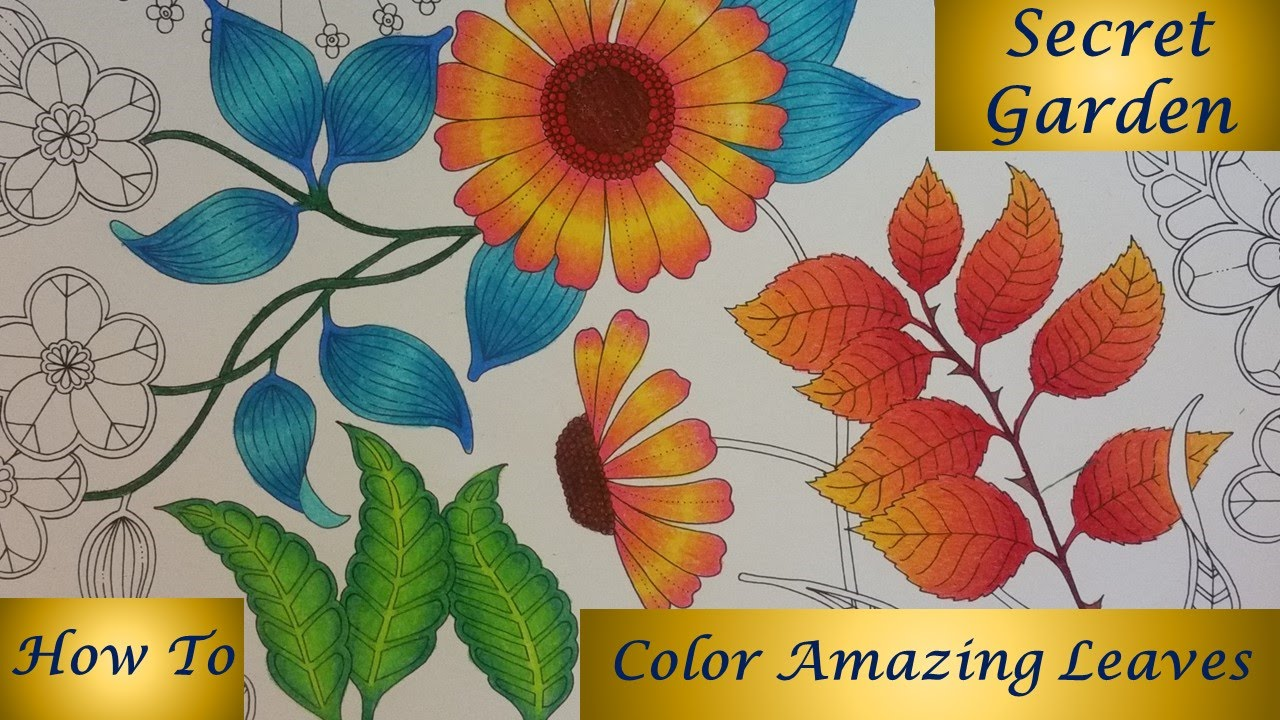 How to color amazing leaves secret garden coloring Coloring books for adults how to