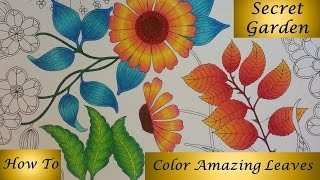 How To : Color Amazing Leaves | Secret Garden Coloring Book