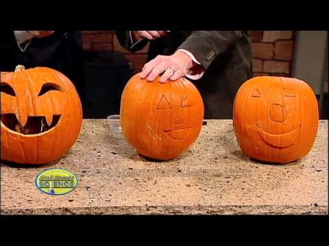 Exploding Pumpkins - Cool Science Experiment