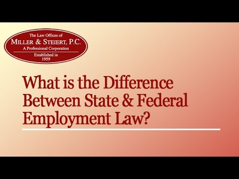 Difference Between State & Federal Employment Law? | Denver Employment Lawyer