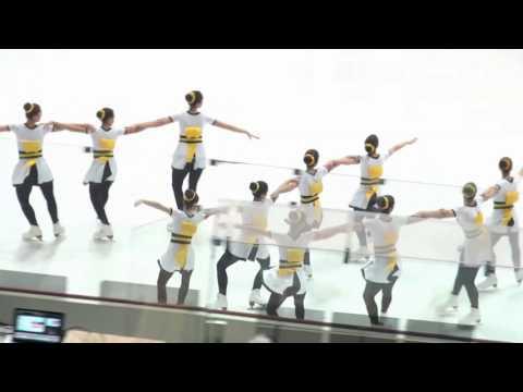 Shinning Blades B-Novice - Zagreb Snowflakes Trophy 2017 - Free Skating