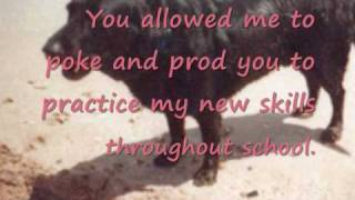 Letter To My Dog_0001.wmv