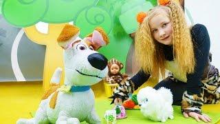 Приключения игрушек из мультика Тайная жизнь домашних животных