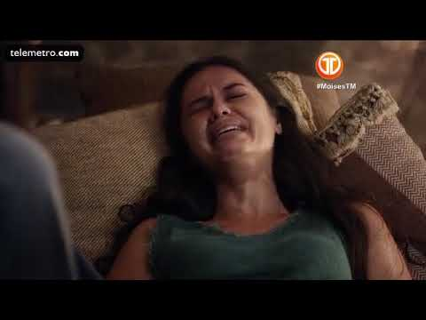 Download moices capitulo 188
