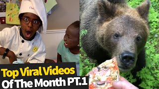Top 25 Best Viral Videos Of The Month - June 2020 (Part 1)