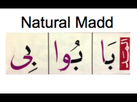 Madd Tabeei - Madd Letters - Diacritical Marks - Section 2 Lesson 4