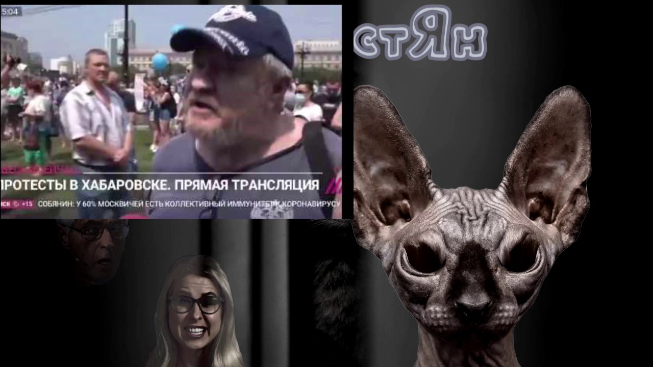Итоги недели с Котом Костяном / Хабаровск - Питер