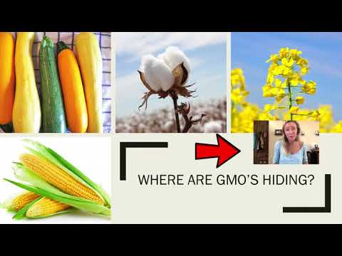 GMO Final Presentation