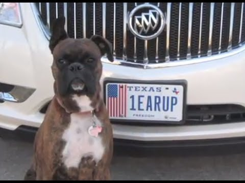 My Plates Texas >> My Plates, My Story - 1EARUP Personalized License Plate - YouTube