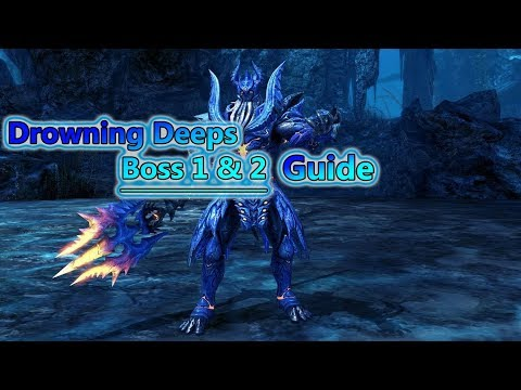 Blade and Soul- Drowning Deeps Boss 1 and 2 Guides