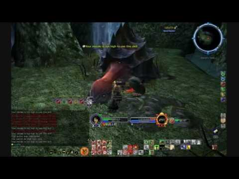 LOTRO Soloing Tomb Of Elendil with a Warden