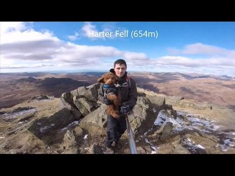 Harter Fell - Lake District