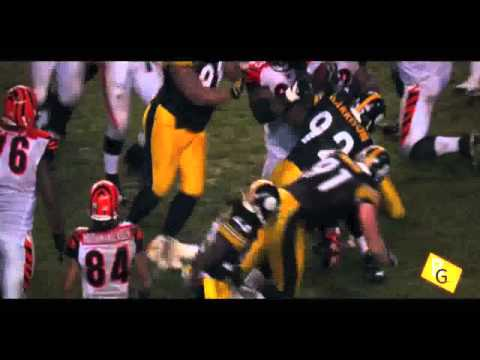 James Harrison Highlights