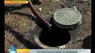 видео Почему экологические проблемы Байкала до сих пор не решены — Российская газета