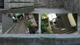 美女段 ~Beauty & Stairs~ 吉田由莉 動画 28