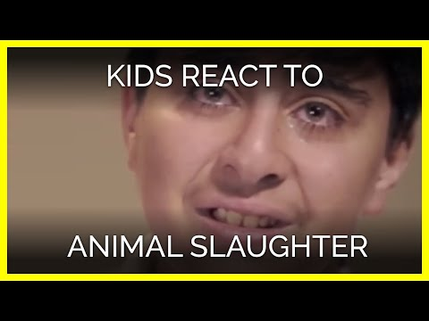 """Ultima follia vegana, ai bambini: """"Vuoi un sandwich di pollo? Devi ucciderlo tu"""" (VIDEO)"""