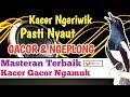 Pancingan Kacer Ngeriwik Agar Ngeplong Gacorr  Mp3 - Mp4 Download