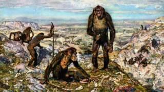 Человечество сегодня и 2 миллиона лет назад (рассказывает антрополог Аили Марница)
