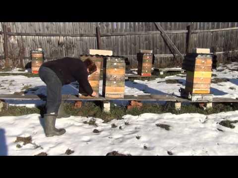 знакомства зимовники