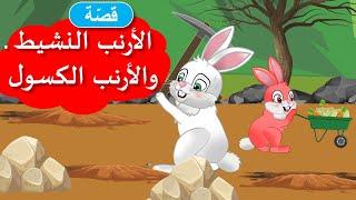 زاد الحكايا - قصص اطفال - قصص قبل النوم - الأرنب النشيط و الأرنب الكسول