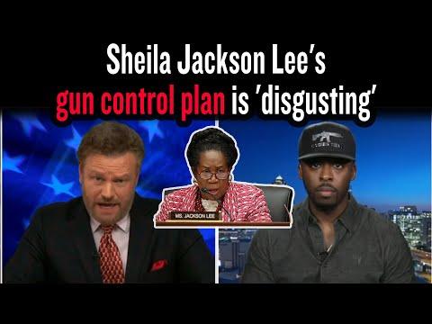 Sheila Jackson Lee's gun control plan is 'disgusting'