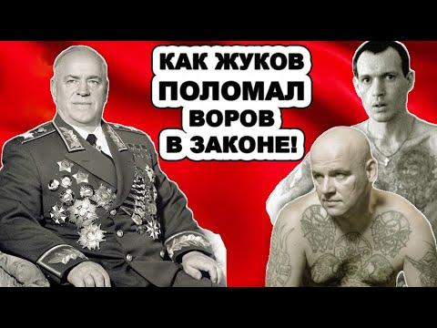 Содрогнулся даже Сталин! Как Маршал Жуков разделался с самыми авторитетными ворами в законе