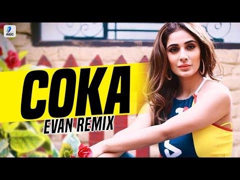 Haye Ni Tera Coka Coka (Remix) | Evan | Sukh-E Muzical Doctorz | Alankrita Sahai