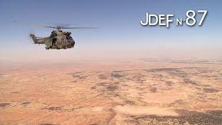 "Spécial ""Mali, un an après"" (#JDEF)"