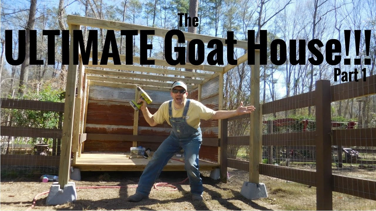 THE ULTIMATE DIY GOAT HOUSE!!! Well, it's ultimate to us! on goat barns, goat fence panels, goat ranch in the us, goat farm, goat shelter, goat playground, goat blankets, goat pens, goat of america, goat tower, goat vaccine schedule, goat skinning machine, goat fencing, goat housing, goat on camel, shed plans, goat farming business plan, goat houses hutches,