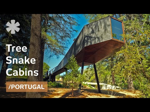Elevated huts perch like snakes in trees at Portuguese vintage spa