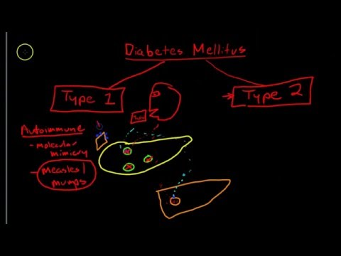Causes and symptoms of type 1 diabetes and type 2 diabetes