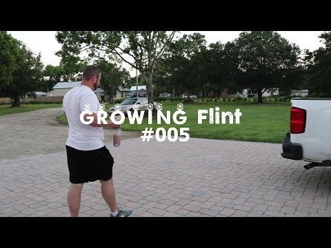 Flying To NY | Growing Flint #005