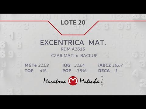 LOTE 20  Maratona Matinha