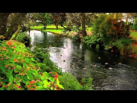 இڿڰۣ-  MONA VALE GARDENS  -  CHRISTCHURCH - music by David Nevue