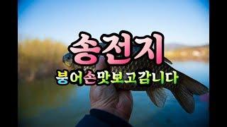 송전지 월척급 붕어손맛 보고감니다 (관광좌대)