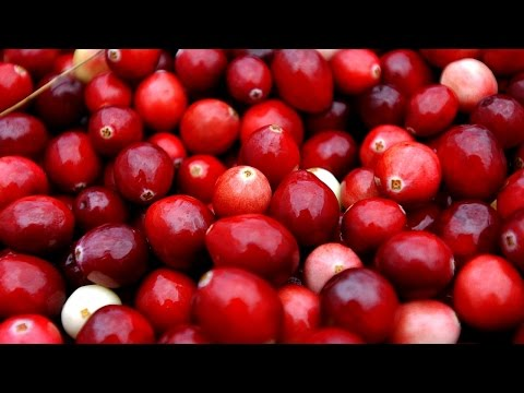 Cranberry Products Might Not Prevent UTIs