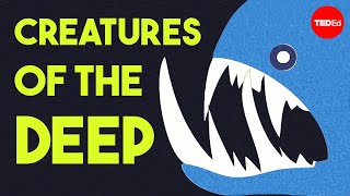 The otherworldly creatures in the ocean