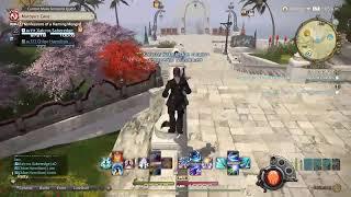 Final Fantasy xiv msq-ing, training