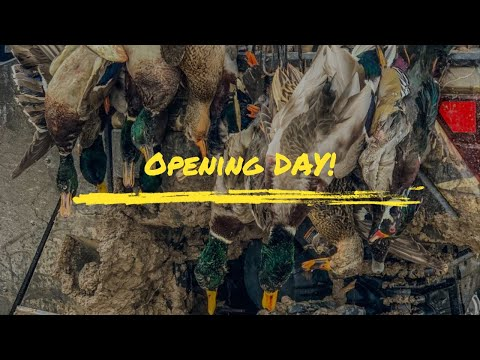 Duck Hunting: Opening Day 2019