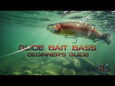 Glide Bait Fishing Bass: A Beginner's Guide