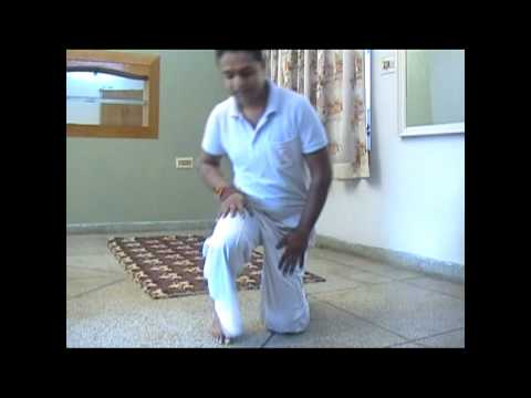 Chandra Namaskara Maheshmasteryoga.com.wmv