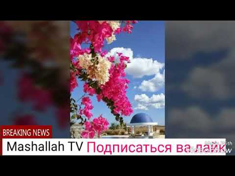 Жума аёмингиз муборак болсин охиригача куринг